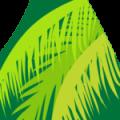 J-Palm Liberia