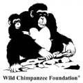 Wild Chimpanzee Foundation (WCF)